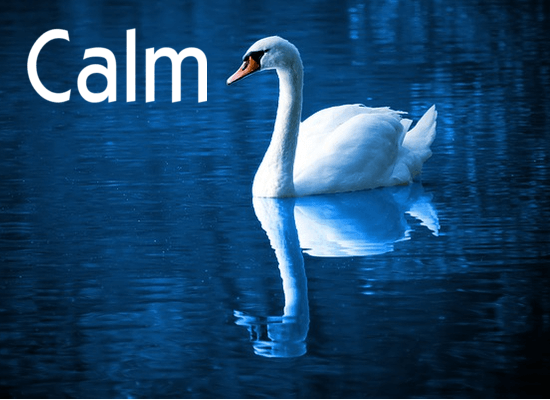 how to manifest calm